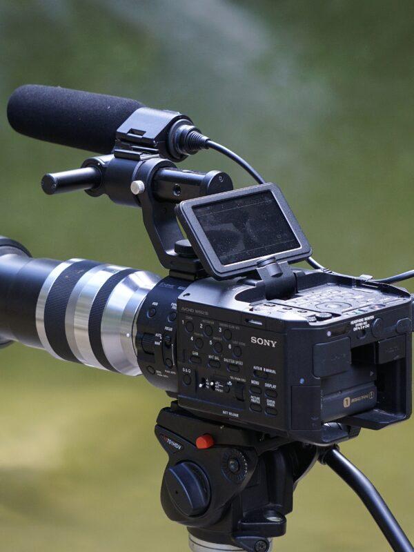 Eine Filmkamera im Wald