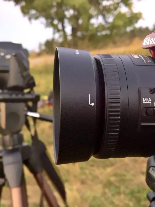 Fotokameras auf Stativen am Waldrand