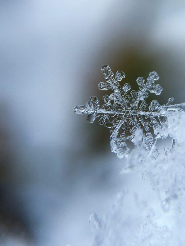 Eiskristall im Schnee