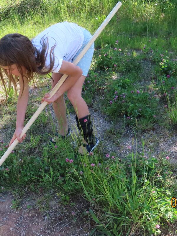 Eine Junge Naturwächterin bearbeitet den Boden für den Sandlaufkäfer