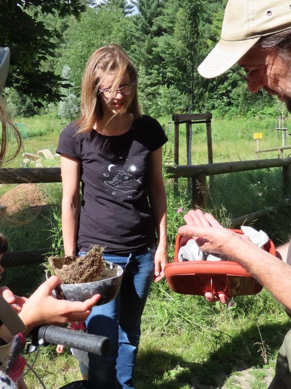 Erstversorgung einer Spitzmaus durch die Jungen Naturwächter und die Naturschutzexperten
