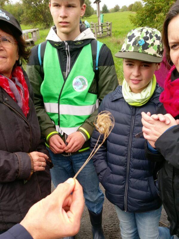 Die Jungen Naturwächter bestaunen beim Nistkastenbau einen Halm