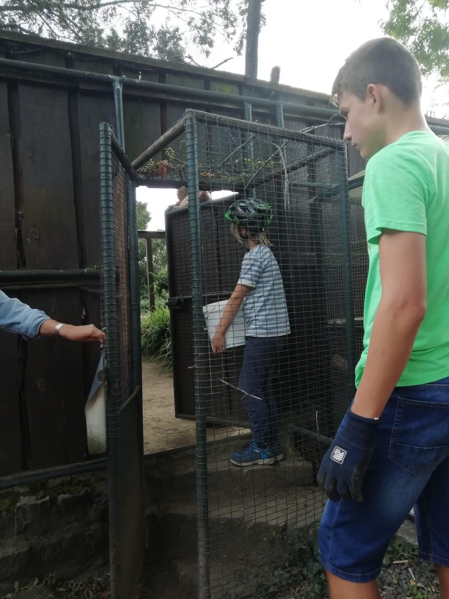 Neues Gehege für den Zoo